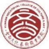 云南文化艺术职业学院成人高考报名入口