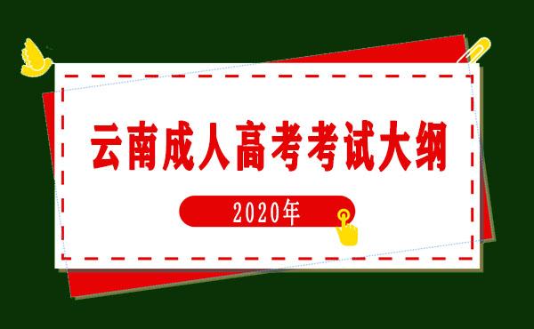 2020年云南成人高考考试大纲