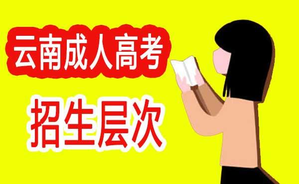2020年云南省成人高考招生层次有哪些?有什么要求?