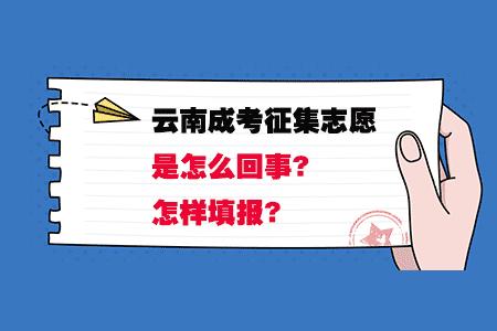 云南成人高考征集志愿是怎么回事?怎样填报?