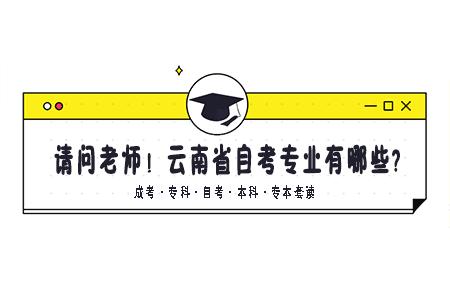 云南省自考专业有哪些?