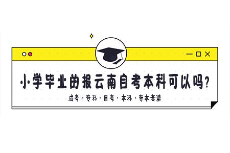 小学毕业的报云南自考本科可以吗?