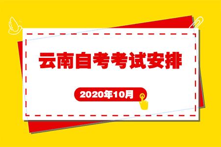 2020年10月云南省第84次自考开考专业及课程考试安排(本科)
