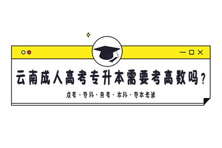 云南成人高考专升本需要考高数吗?