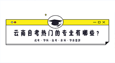 云南自考热门的专业有哪些?