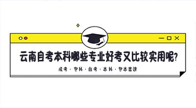 云南自考本科哪些专业好考又比较实用呢?